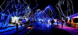 Holiday Lights Tour | Five Star Tours